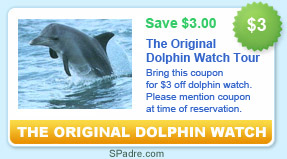dolphin watch coupon